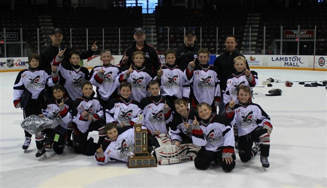 2004-Champs-Maitland-Ice-Sharks_cropped.jpg